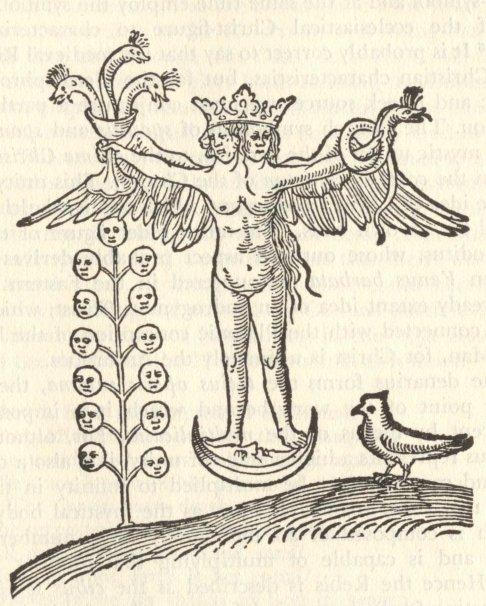 Rosarium 10